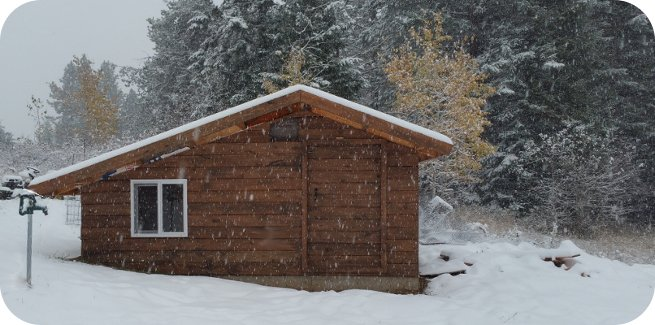 snow falling on new bunny barn