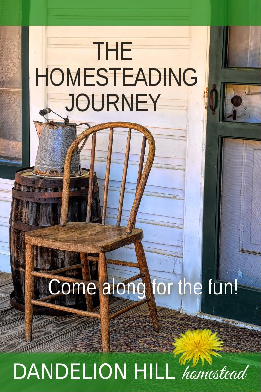 Pinterest image for The Homesteading Journal article
