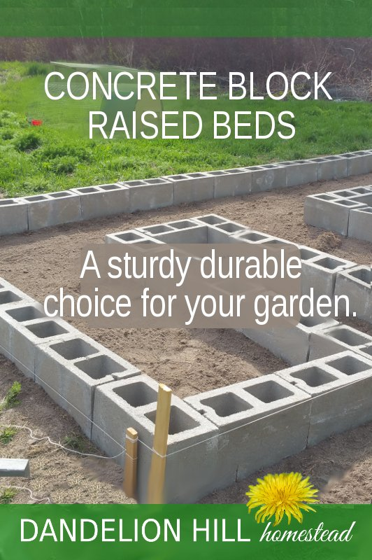 Pinterest image for Concrete Block Raised Beds article