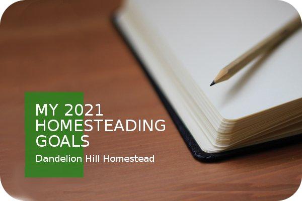 my homesteading notebook