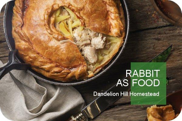 rabbit pot pie