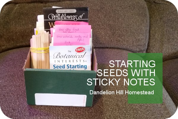 seeds organized in order of planting time