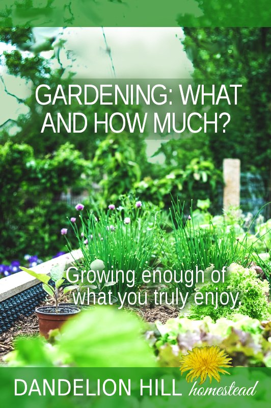 Pinterest image for How Much and What to Grow article