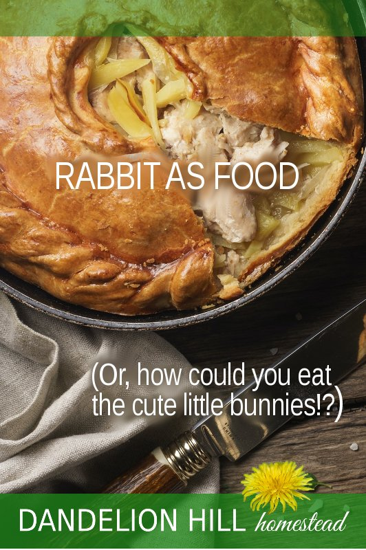 Pinterest image for Rabbit as Food article