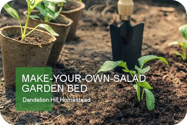 Make-Your-Own-Salad Garden Bed article