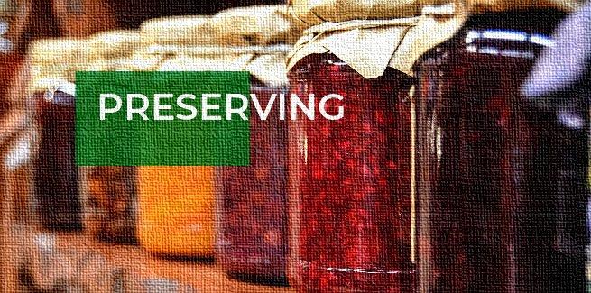 preserving articles
