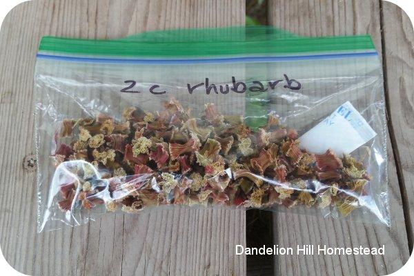 dehydrated rhubarb in baggie